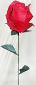 Premium Single Rose -each