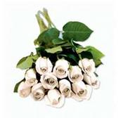 Dozen Roses Bunches - White