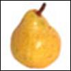 Anjou Organic Pear - lb