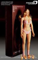 Seamless Female Caucasian DD:  Tan, Blonde Hair - Boxed Figure