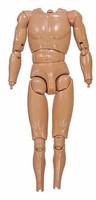 Fashion Man - Nude Body