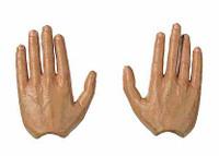 Herbert Otto Gille - Hands