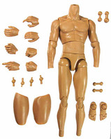 ZY - Male Muscular Nude - Packaged Set