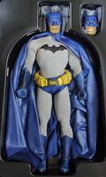 DC Comics: Batman - Boxed Figure