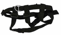 Spetsnaz FSB Alpha - Harness