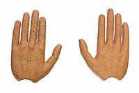Fringe: Walter Bishop - Hands