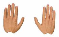 Fringe: Peter Bishop - Hands w/ Bendy Fingers