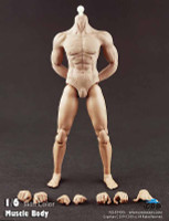 COO: B3006 Hybrid Muscular Body - Packaged Figure Set