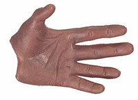 Rome Gladiator (H011) - Left Open Hand
