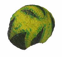 Dennis Rodman - Hair (Green w/ Pattern)