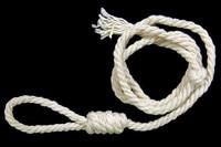 Prisoner Zombie - Noose Rope