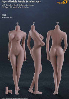 Seamless Female S12D Large Breast (With Swapable Feet): Suntan w/ Metal Structure - Boxed Figure