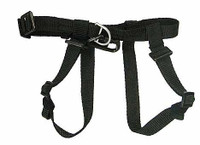 Black Storm Guard - Repelling Harness