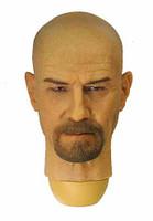 Breaking Bad: Heisenberg - Head
