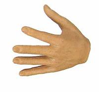 Roman Republic Lucius - Left Open Hand