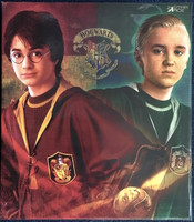 Harry Potter: Chamber of Secrets: Harry Potter & Draco Malfoy (Quidditch Version) - Boxed Figure