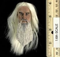 Saruman (Slim Memorial Version) - Head (No Neck Joint)