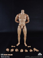 COO: BD009 - Muscle Male Body Set - 25cm Tall