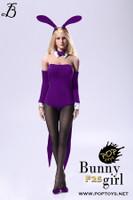 Bunny Girl Waitress Suit Sets - Boxed Set (Purple)