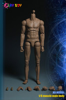 Male Muscle Bodies: PT-MB001 (Molded Neck) - Boxed Figure