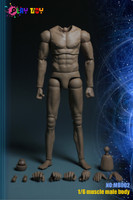 Male Muscle Bodies: PT-MB002 (No Neck) - Boxed Figure