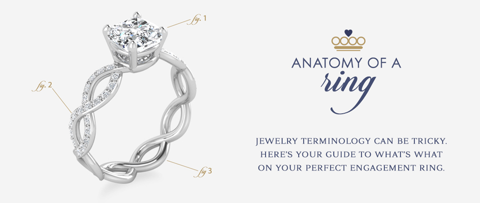 anatomy-ring-short.jpg