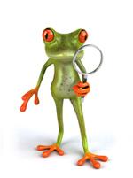 frogmagnifyingglass.jpg