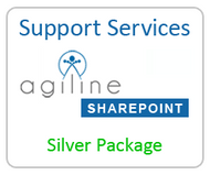 Support Services - Silver Package