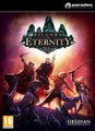 Pillars of Eternity - Hero Edition (PC DVD) product image