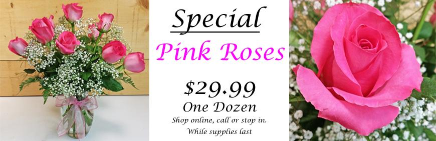 pink-rose-special-banner-copy.jpg