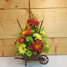 Wheeling into Autumn (SCF2010)