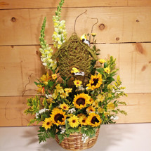 Sunflower Daydreams  SCF7011