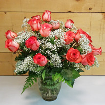 Iguana Roses 24 Vased (SCF8503)