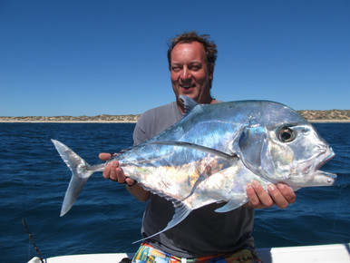 Solid Diamond Trevally caught and released Dirk Hartog Island Western Australia
