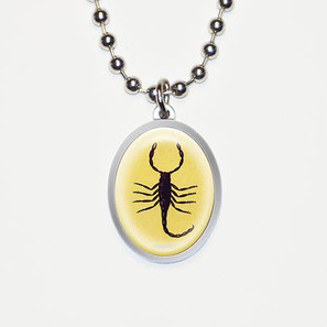 Sting or Be Stung Scorpian Charm Necklace