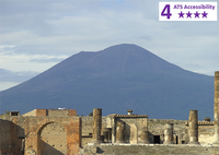 Private Accessible 8 hour Naples Shore Excursion to Pompeii and Vesuvius