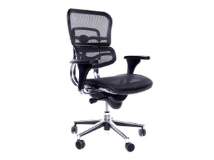 OFW ME8ERGLO Task Chair