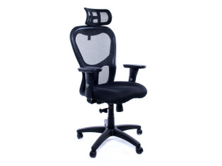 OFW Rogue HB Task Chair w/Headrest