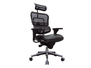 Eurotech Ergohuman Leather Seat & Mesh Back