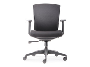 Friant Velocity Mid Back Task Chair