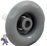 "Jet Internal, Pentair, Cyclone Micro, 3-1/4"" face diamater, Directional, 5 Scalloped, Dark Gray"