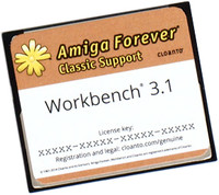 AmigaOS 3.1 on Compact Flash