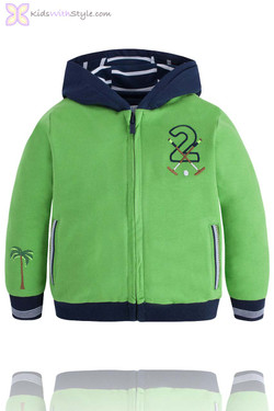 Boys Hooded Watersports Pullover in Green