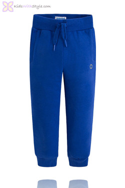 Boys Classic Jogger Pants in Blue