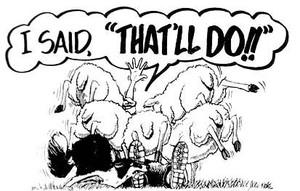 Thatll Do! Sheep T-Shirt