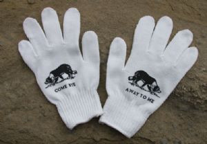 Direction Gloves