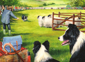 """Sheepdog Trials"" by Tracy Hall"