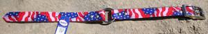 USA Dog Collar