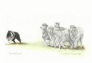 Relentless Print by Cheryl Harley-Volzt