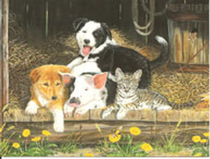Border Collie Thank You card